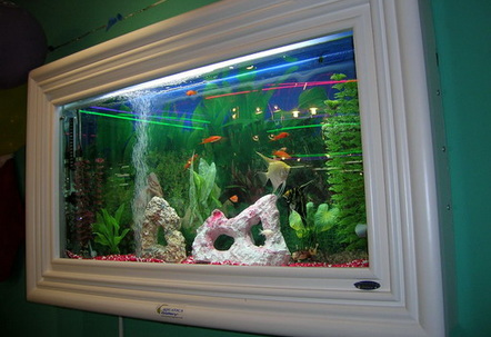 Aquatica Gallery WallMounted Fish Tank wwwaquaticagallerycom  The solid wood frame and cabinet make the fish tank a very classy decorating furniture in my living room  Notice that medium size plants are used on the either sides of the tank to cover up the submerged heater and filter