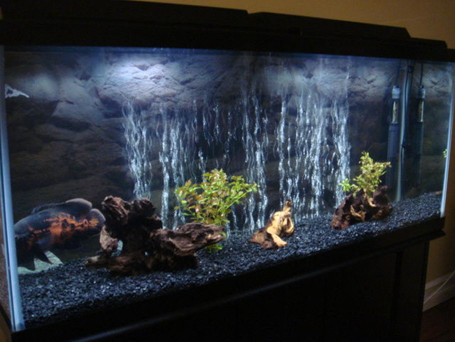Y0da 007 S Freshwater Tanks Photo Id 17572 Full