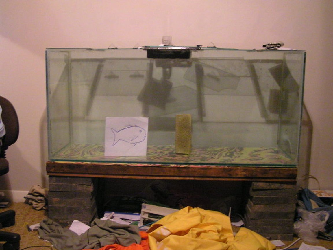 79 gallons saltwater fish tank (mostly fish, little/no live coral) - Not too heavily stocked at the moment, low bioload, extremely high oxygen content. Very easy to maintain - the lazy reef keepers dream. BB sand bed, and using the controversial no-skimmer technique. Seems to be working a treat. - I'm a dork. Obviously.
