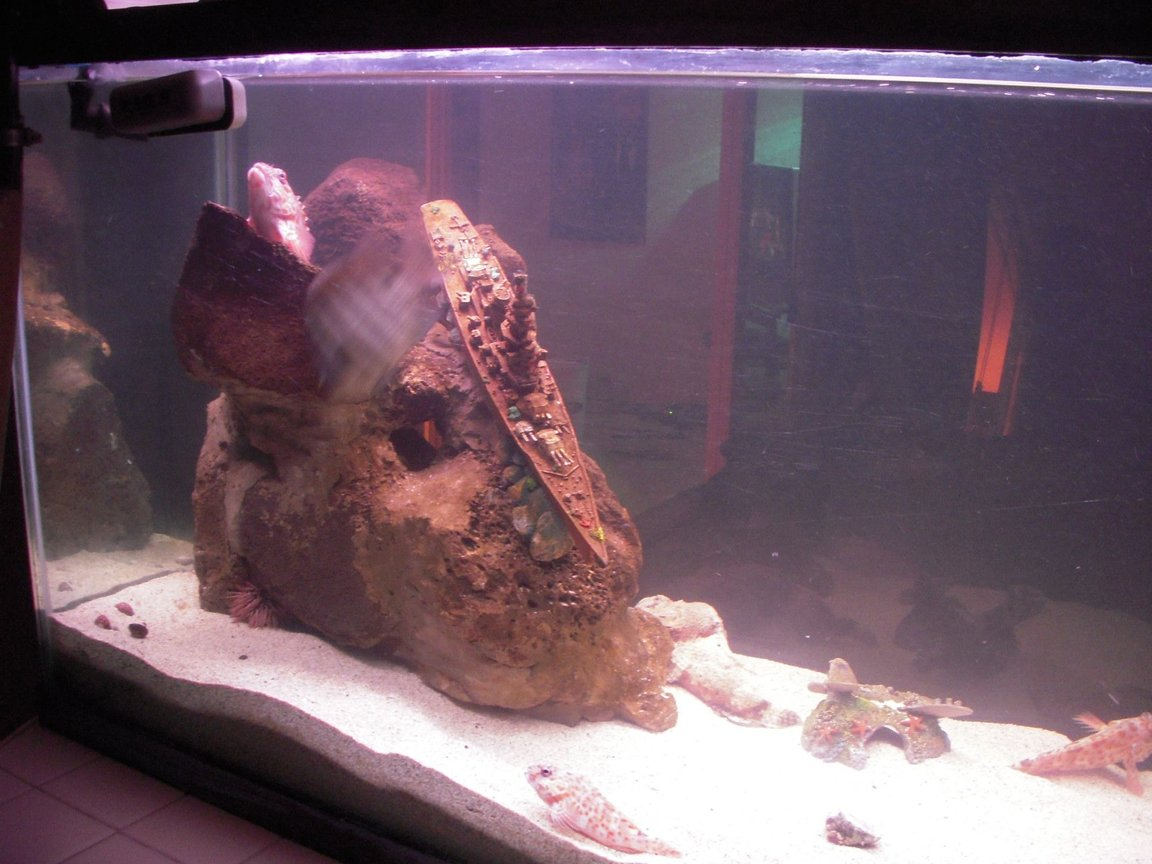 125 gallons saltwater fish tank (mostly fish, little/no live coral) - My hand made Tank! I made the rock structures out of lava rocks and concert. Caught every fish in the tank!! I did a WW2 Theme with 1 sunken japanese ship,1 sunken submarine and 1 crashed japanese zero. volcano in the left corner lights up and bubbles!