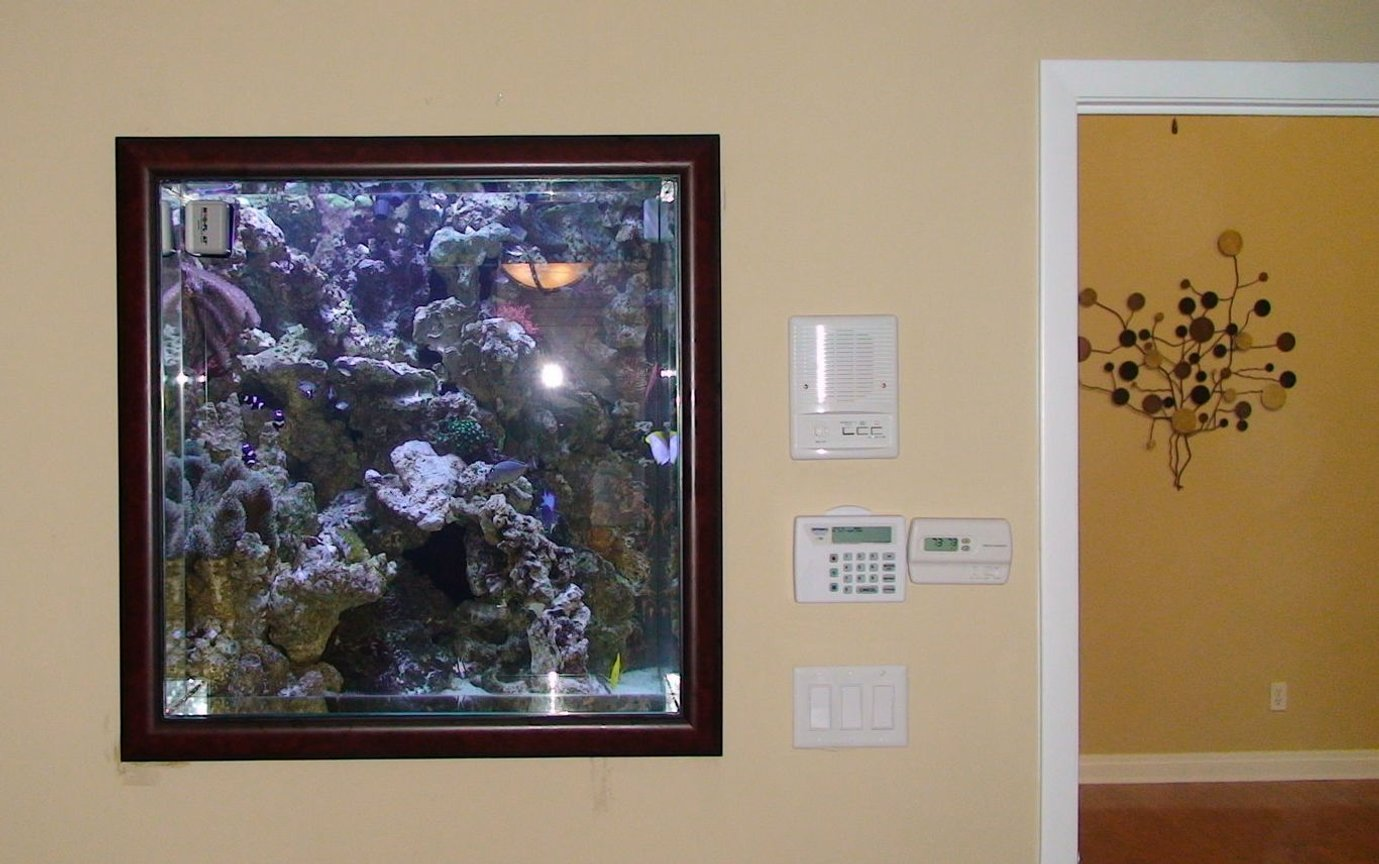 235 gallons saltwater fish tank (mostly fish, little/no live coral) - Inside bedroom with the tank view