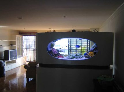 Rated #5: 200 Gallons Saltwater Fish Tank - a view from the back