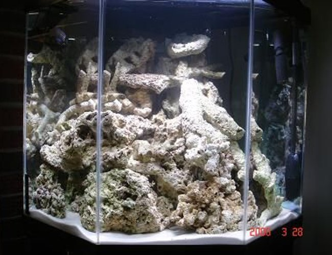 45 gallons saltwater fish tank (mostly fish, little/no live coral) - 70 lbs rock curing