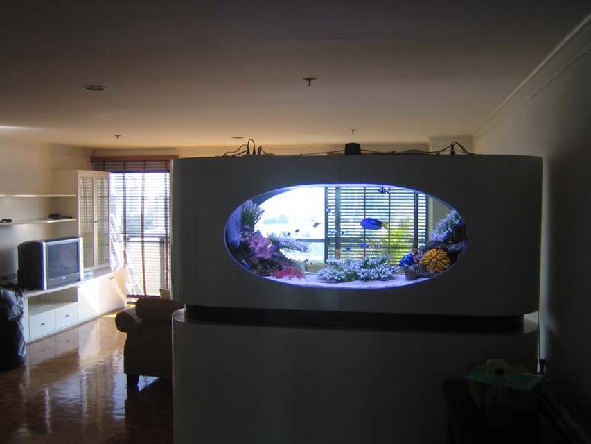 Rated #1: 200 Gallons Saltwater Fish Tank - a view from the back
