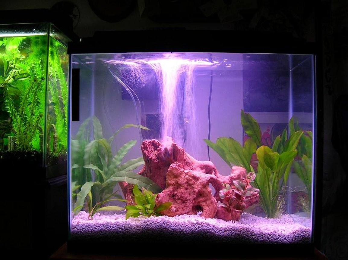 45 gallons freshwater fish tank (mostly fish and non-living decorations) - my tanks..... 2 of them 20 gal, 25 gal.
