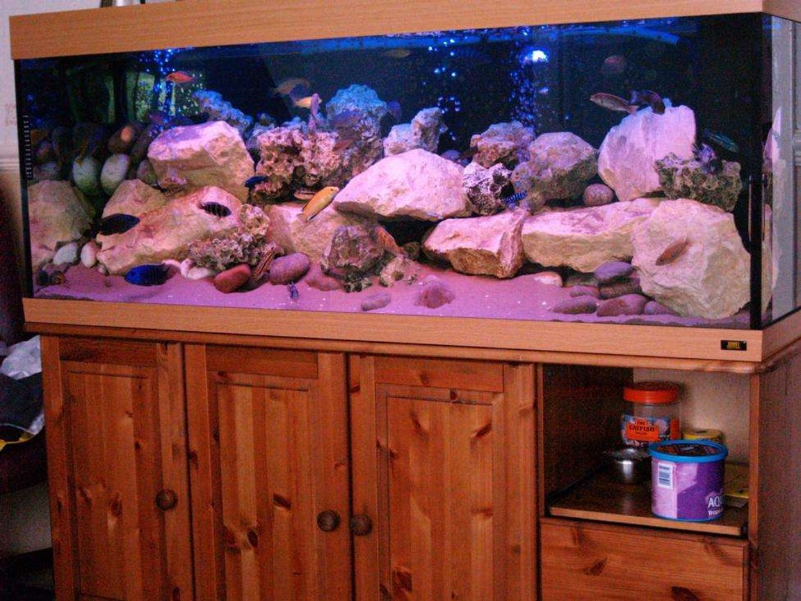87 gallons freshwater fish tank (mostly fish and non-living decorations) - Malawi Mansion is a Jewel 400L Filtered by jewel jumbo internal and Eheim ecco 600lph external filter. Rockwork is of cotswold and ocean rock with north sea pebbles. Substrate is of fine sand. Lighting is of aqua glo and marine blue. Airpump is TetraTec 400