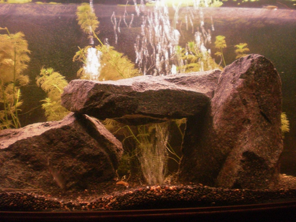 70 gallons freshwater fish tank (mostly fish and non-living decorations) - StoneHenge - Granite rock with a suspended rock creating a tunnel. I placed an undergavel airstone beneth the suspended rock which spreads the bubbles around and gives a unique look!