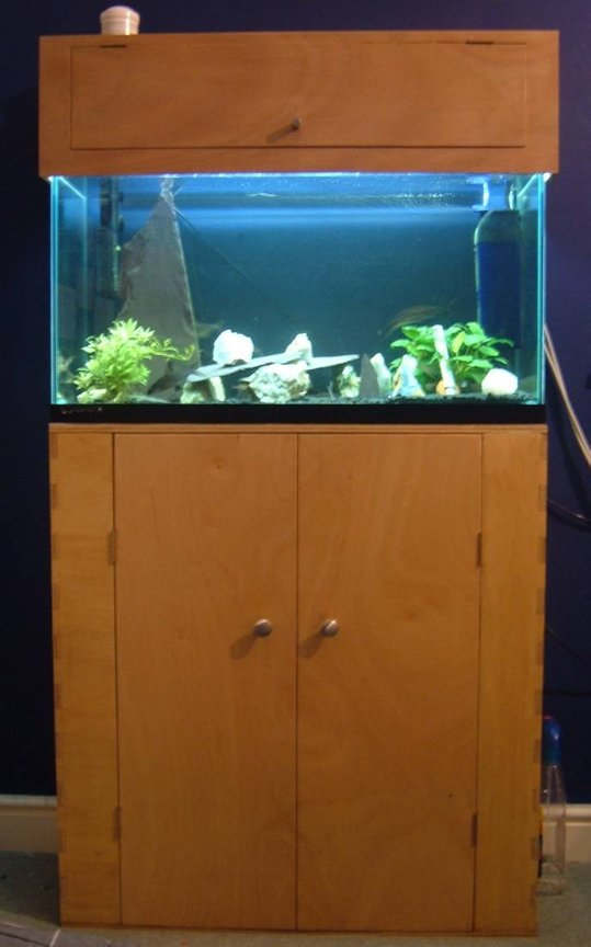 25 gallons freshwater fish tank (mostly fish and non-living decorations) - Home built cabinet and lid. Lots of rocks, to try and seporate the L015 pleco.