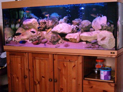 87 gallons freshwater fish tank (mostly fish and non-living decorations) - Malawi Mansion is a Jewel 400L