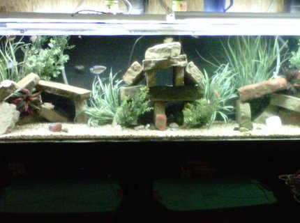 350 gallons freshwater fish tank (mostly fish and non-living decorations) - 350 gallon acrylic