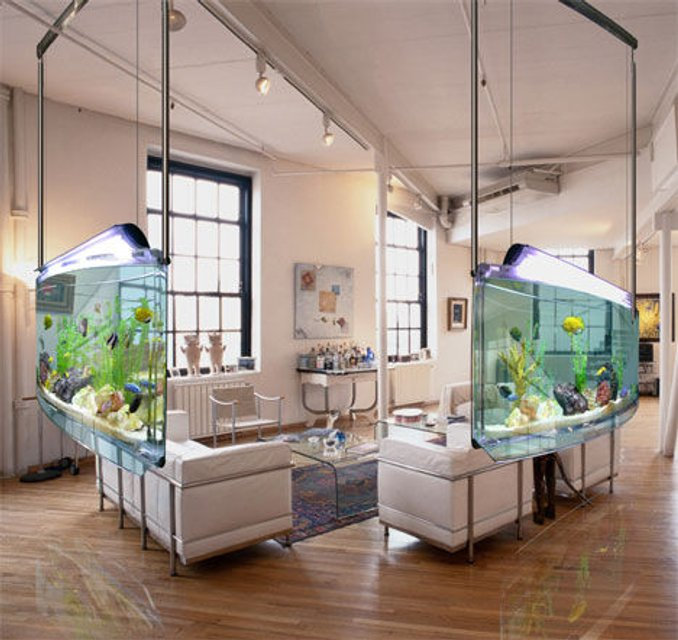 Rated #12: 32767 Gallons Freshwater Fish Tank - =]