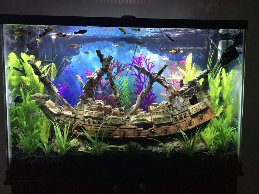Rated #2: 45 Gallons Freshwater Fish Tank - Ship Wreck