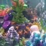 freshwater fish tank (mostly fish and non-living decorations) - Fake Reef Corals and Plants..(neon)..White pebble floor.. Tropical Fresh Water Fish..