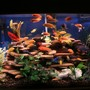 125 gallons freshwater fish tank (mostly fish and non-living decorations) - New Tank setup