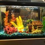 10 gallons freshwater fish tank (mostly fish and non-living decorations) - My original 10 gallon freshwater tank