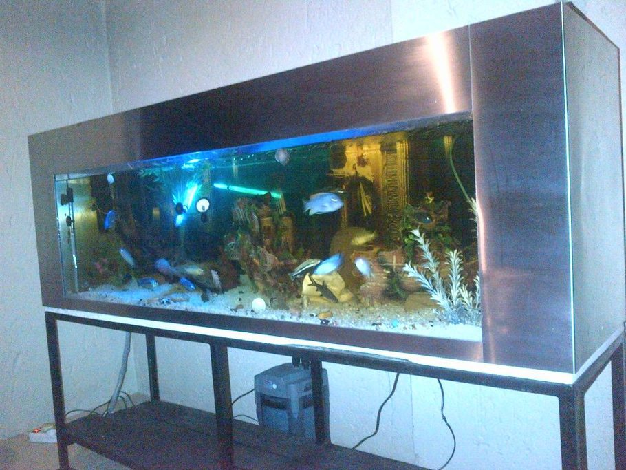 6 Foot Stainless Steel Tank 500 Litres Malawi S South Africa