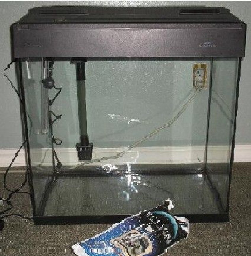 fish tank picture - On its way to being a saltwater tank