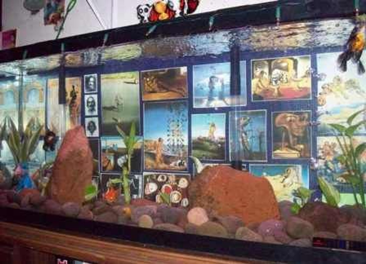 fish tank picture - Another Angle...