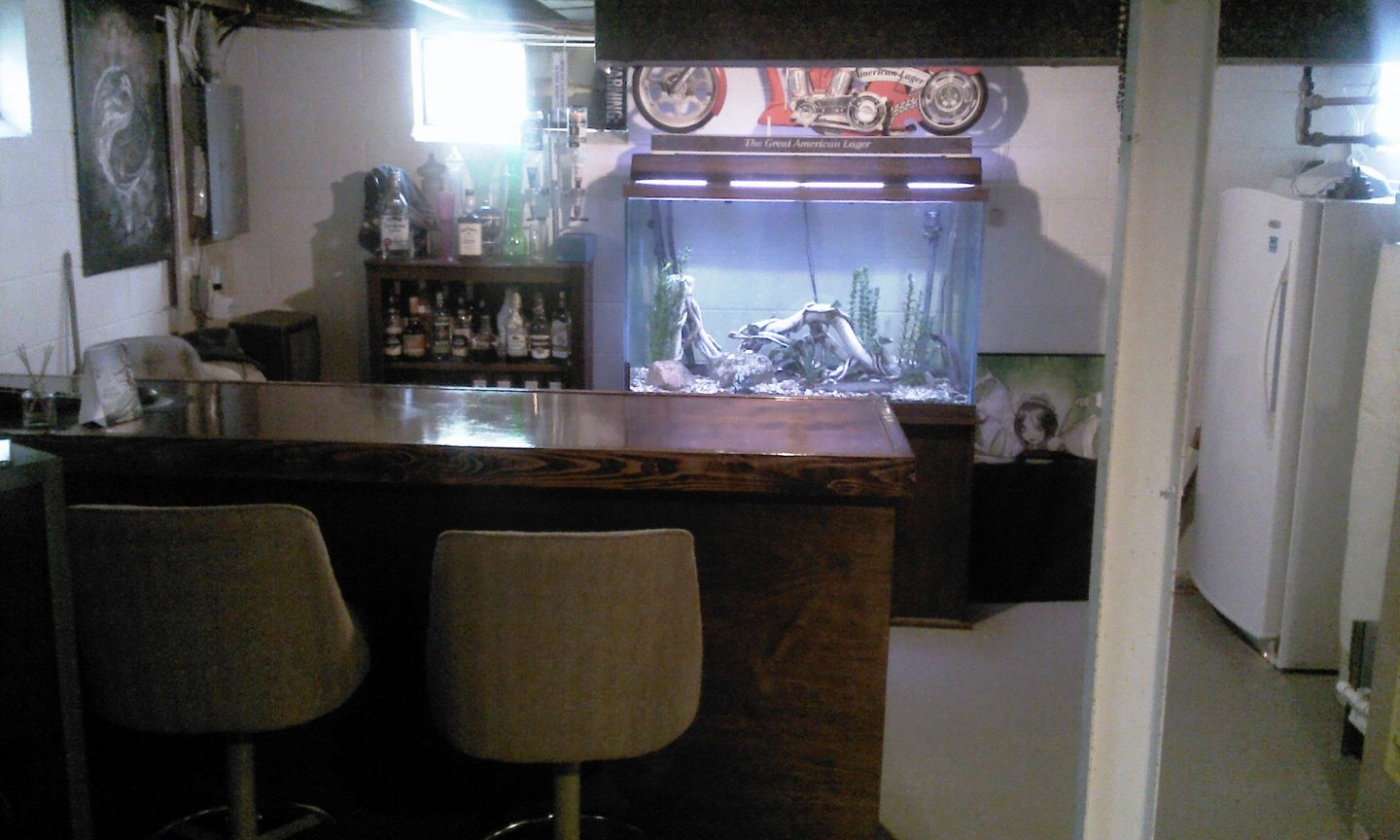 fish tank picture - the home of my 150 gallon - basement bar. as you see this picture, immediately behind you is the pool table (50s vintage, complete with stained glass light), darts, and TV lounge