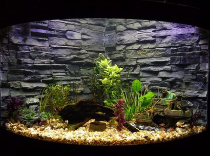 92 gallons planted tank (mostly live plants and fish) - Aqueon corner model 92 gallon, moderately planted.  Custom and very original background.